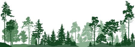 Forest trees. Isolated on white background. Vector illustration 向量圖像