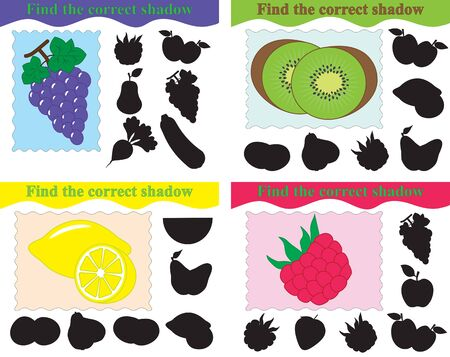 Set of educational game for kids, find the correct shadow of grapes, kiwi, lemon, raspberry,. Vector illustration.