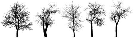 Bare trees (chestnut tree, apple tree, cherry tree), set of silhouette. Vector illustration Ilustração