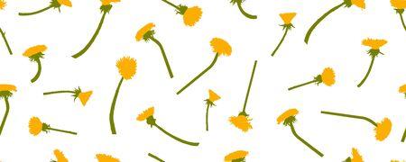 Yellow dandelions flowers, seamless pattern. Vector illustration.
