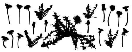 Dandelion flower, set of silhouettes. Vector illustration. Ilustração