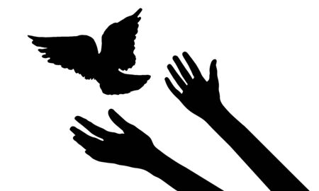 Flying bird from woman's hands, symbol of freedom or victory, isolated silhouette. Vector illustration