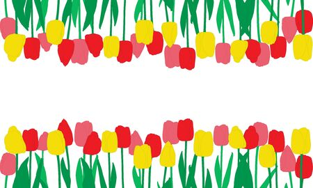 Red, pink and yellow tulips flowers and their reflection, background. Vector illustration