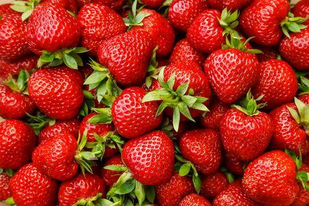 Fresh ripe strawberries, beautiful berry background.