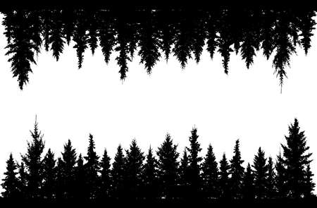 Forest and forest upside down. Black silhouettes of spruce trees. Vector illustration
