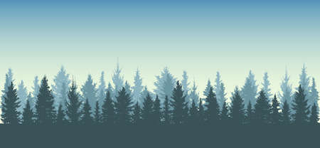 Forest background, nature, landscape. Silhouettes of spruce trees.All fir trees are separated from each other. Vector illustration