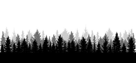 Panorama of beautiful forest, silhouette. All spruces are separated from each other. Vector illustration. Illustration
