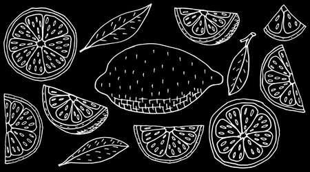 Fruit lemon hand drawing. Set of whole and slice, and quarter of lemon. White contour of fruit on black background. Vector illustration. Illustration