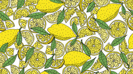 Seamless pattern. Lemon whole and slices, leaves of lemon tree, hand drawing. Vector illustration.