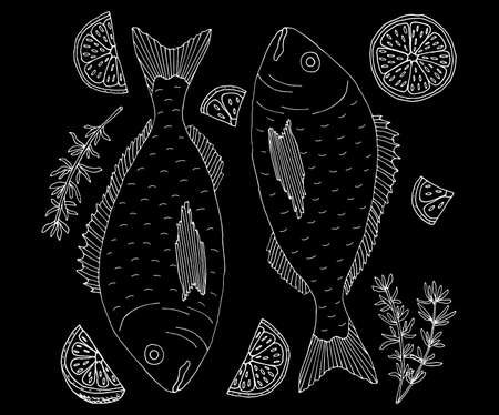 Hand drawing of dorado fish with lemon and spices. White contour on black background. Cooking dish. Template for restaurant or cafe menu, card, promo, invitation, market or shop. Vector illustration Illustration