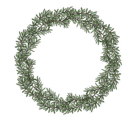 Rosemary wreath hand drawn, isolated. Beautiful circle frame, template with place for lettering. Vector illustration.