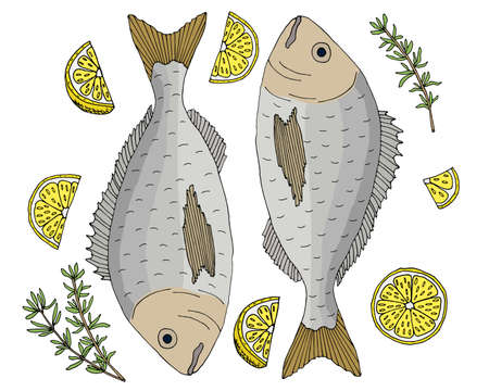 Fish dish, dorado with lemon and thyme hand drawn, isolated. Beautiful template for restaurant or cafe menu, card, promo, invitation, market or shop. Vector illustration Illustration