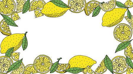 Lemon frame hand drawn. Yellow whole lemons and slices and quarter and green leaves of lemon tree. Vector illustration. Illustration