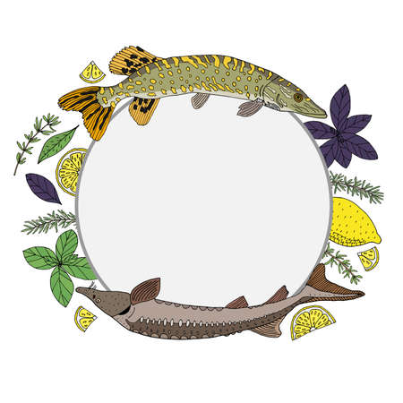 Circle frame with river fish and spices. Hand drawn of pike, sturgeon, lemon, basil, rosemary, thyme. Template for restaurant or cafe menu, card, invitation, market or shop. Vector illustration
