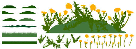 Grassland, constructor kit. Beautiful dandelion flowers, grass. Collection of element for create spring meadow. Vector illustration. Ilustração
