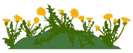 Beautiful yellow dandelions flowers on lawn, springtime. Vector illustration Stock Illustratie
