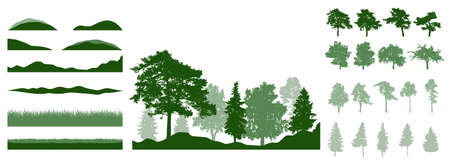 Design elements of summer trees. Constructor woodland, landscape. Silhouettes of beautiful fir trees, pine, other trees, grass, hill. Creation of beautiful park, forest. Vector illustration