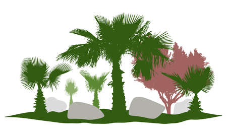 Decorative palm trees silhouette, beautiful garden, stone. Vector illustration