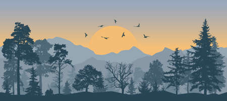 Beautiful forest on background of mountains and sunset and flying birds, silhouettes. Vector illustration Ilustração