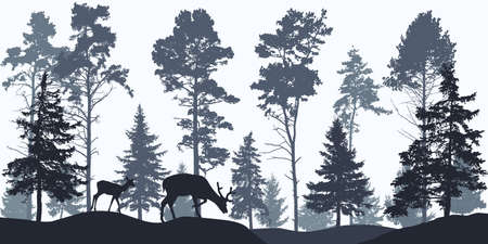 Wallpaper woodland, silhouette of coniferous forest and animals.