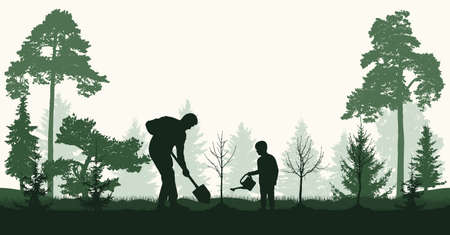 Reforestation, planting trees in forest.