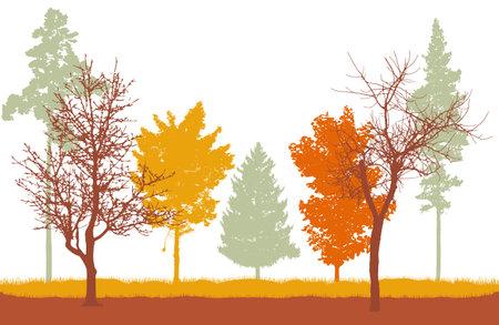 Autumn woodland, silhouette of bare tree Stock Illustratie