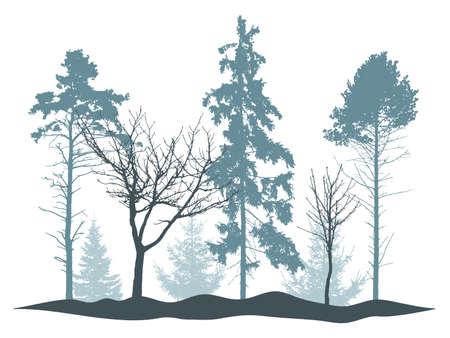 Winter woodland, silhouette of bare tree, spruce, pine. Beautiful nature, landscape. Vector illustration Stock Illustratie