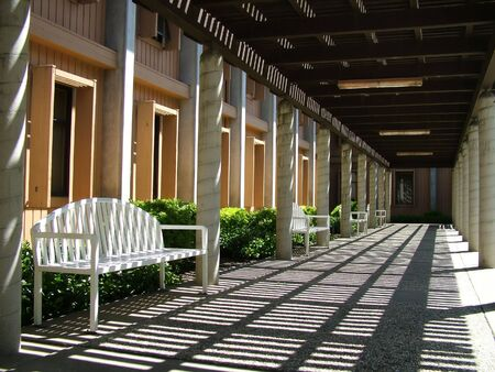 Outdoor pathway with benches