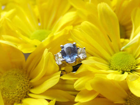View of a sapphire ring in flowers