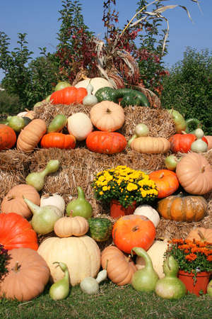 Beautiful arrangement for a fall theme,  or thanksgiving. Stack of hay with pumpkins, gourd, mums and corn photo