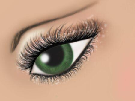 長い目で緑の女性の目のイラストまつげし、メイクアップ