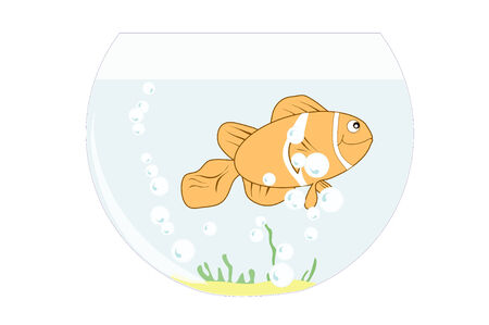 gill: Illustration of a clown fish in a fish bowl with bubbles and some green and sand