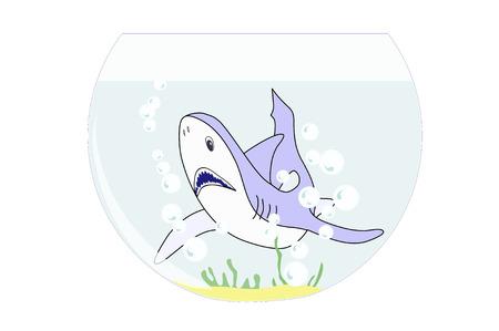Illustration of a shark swimming in a fish bowl Illustration