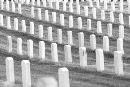 national hero: Headstones at the Arlington National Cemetery near Washington DC Stock Photo