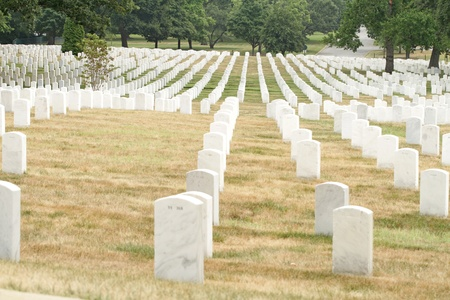 military cemetery: Headstones at the Cemetery near Washington DC
