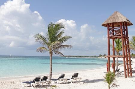 Arbres vides plage de sable blanc, mer et palmiers au Mexique, Riviera Maya