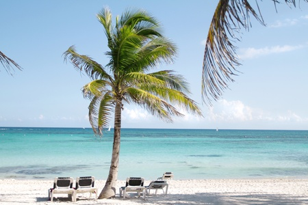 Empty white sand beach, ocean and palm trees in Mexico, Riviera Maya Фото со стока