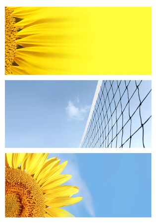 Background banners with a summer theme, yellow flower, sunflower, tennis or volleyball net against blue sky photo