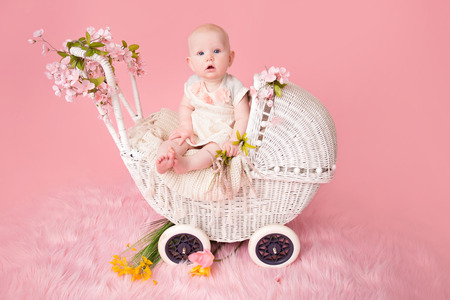Baby sitting in a stroller pram, pink cherry blossom flowers and background