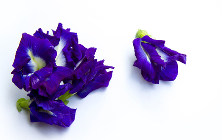 Fabaceae: Blue pea Stock Photo