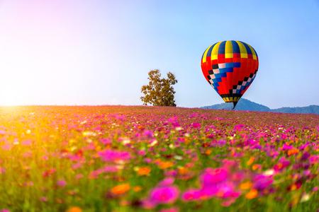 Пейзаж прекрасного космоса цветочное поле и воздушный шар на закате неба