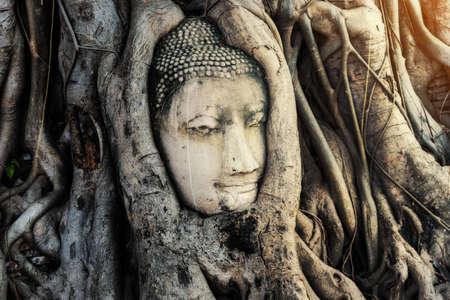 Buddha Head statue with trapped in bodhi tree roots at Wat Maha That temple at Ayutthaya historical park, Ayutthaya province near Bangkok Thailand. Stock Photo