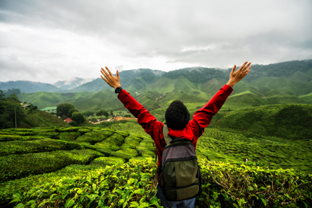 Young asian backpacker traveling into tea fields with mist. Young man traveler take a photo of mountain tea field with foggy, Enjoying tea plantations in Cameron Highlands near Kuala lumpur Malaysia 版權商用圖片