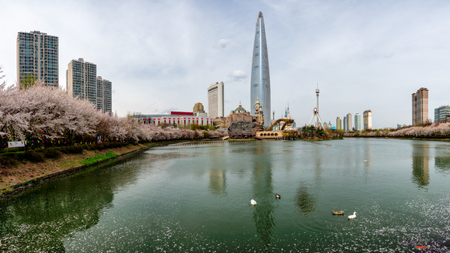 Cityscape of Seoul downtown city skyline with cherry blossom, Aerial view of skyscraper at Seokchon Lake with blue sky and sakura around lake. The amazing modern building at Seoul city, South Korea