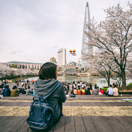 Young asian woman traveler sitting alone and looking view of Cityscape of Seoul downtown city with cherry blossom in Seokchon Lake and sakura around lake at Seoul city, South Korea Stockfoto
