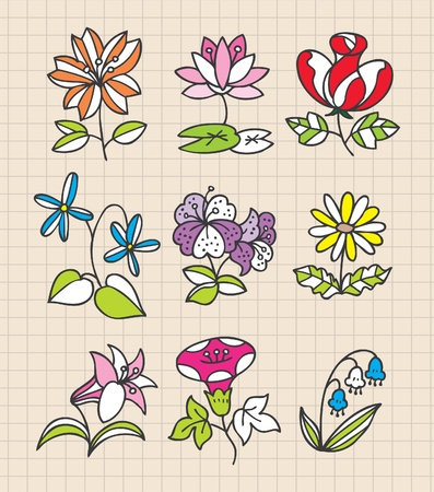 hand draw flower Vector