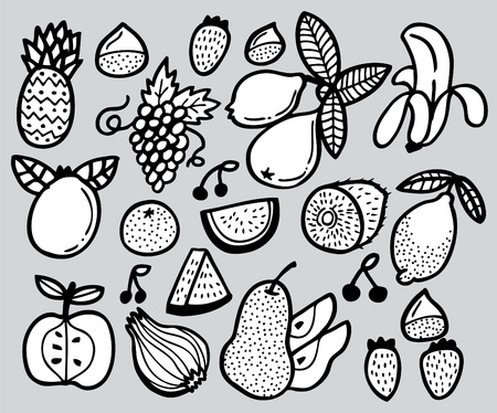 hand draw fruit Vector