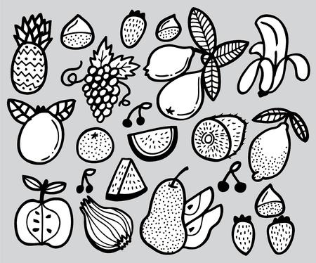 hand draw fruit Stock Vector - 8486823