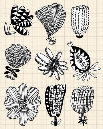 hand draw flower Stock Vector - 8480504