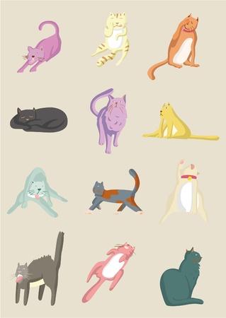 cartoon cat icon Vector